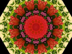mydigitalkaleidoscope