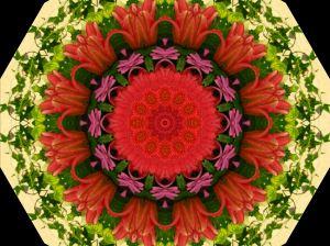 mydigitalkaleidoscope