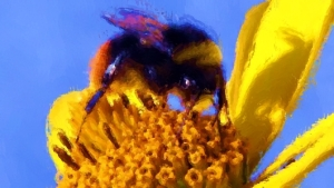 bee_Painting1