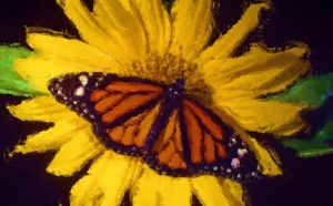 butterfly_Painting1